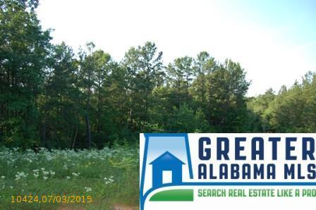 2 Rock Creek Co Rd. 4312, Wedowee, AL 36278 Photo 9