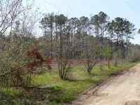 Home for sale: Tbd Campground Rd., Lamont, FL 32336