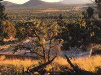 Home for sale: 1124 E. Broken Arrow Dr., Williams, AZ 86046