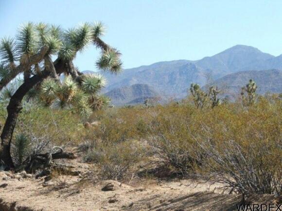 3529-B Arroyo Rd., Yucca, AZ 86438 Photo 25