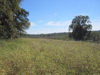 Home for sale: Tbd Fcr 431, Fairfield, TX 75840