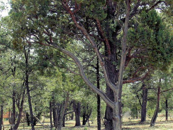 3479 Fence Post Dr., Heber, AZ 85928 Photo 3
