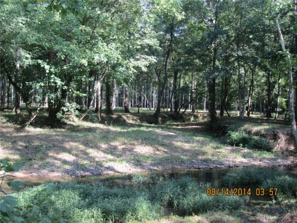 1865 County Rd. 99, Gaylesville, AL 35973 Photo 20