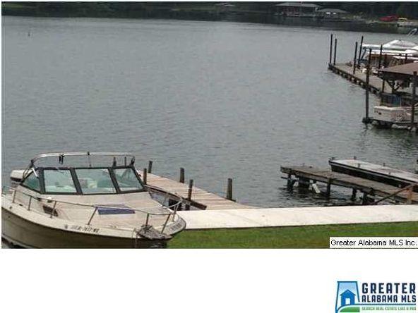 1012 Coosa Island Rd., Cropwell, AL 35054 Photo 25