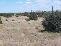 Home for sale: Tbd Hwy. 61 Hwy 61/Cr 8500, Concho, AZ 85924