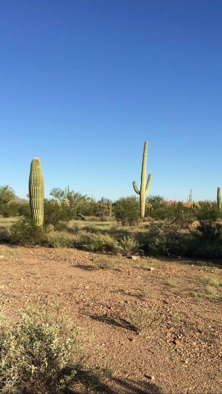 11715 Tortoise Trail, Tucson, AZ 85743 Photo 11
