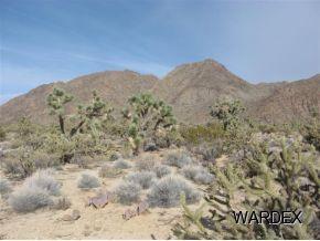 11900 S. Sherry Rd., Yucca, AZ 86438 Photo 6