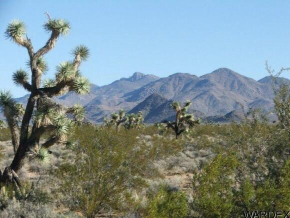 3529-A Arroyo Rd., Yucca, AZ 86438 Photo 6