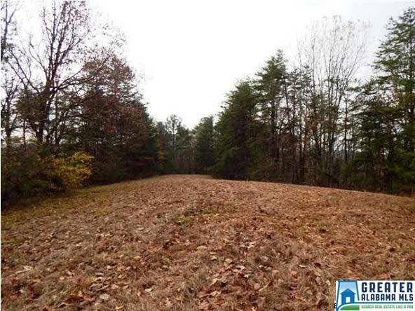 401 Beasley Rd., Gardendale, AL 35071 Photo 18