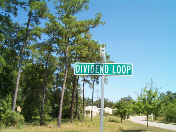 1356 Dividend Loop, Myrtle Beach, SC 29577 Photo 2