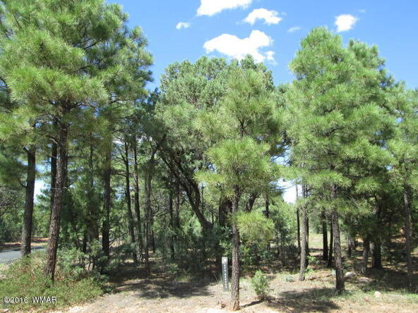 4170 W. Sugar Pine Loop, Show Low, AZ 85901 Photo 3