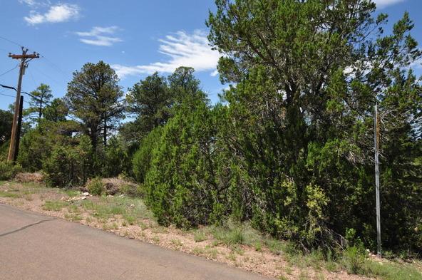 3146 Ranch Rd., Overgaard, AZ 85933 Photo 4
