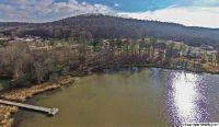 Home for sale: 5 Lake Creek Dr., Guntersville, AL 35976