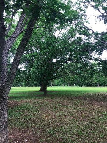 1158 Mccoy, Cottonwood, AL 36320 Photo 10