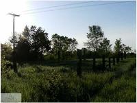 Home for sale: Battle Creek Rd., Bellevue, MI 49021