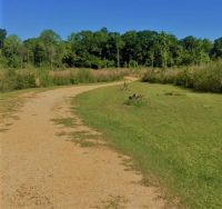Home for sale: 45 Ac Dillon, Tylertown, MS 39667