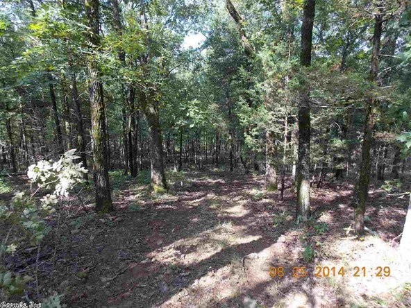 1105 Walnut Grove Rd., Hector, AR 72843 Photo 30