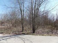 Home for sale: 1020 Marquette Rd., Niles, MI 49120