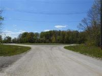 Home for sale: Fox Ridge Ln., Allenton, MI 48002