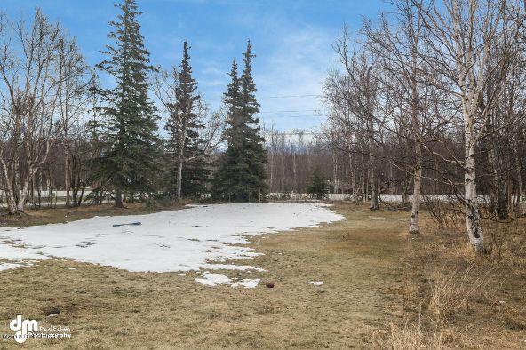 3000 N. Moose St., Wasilla, AK 99654 Photo 28