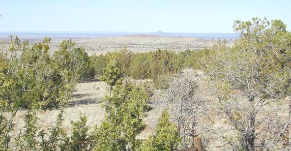 10922 S. High Mesa Trail, Williams, AZ 86046 Photo 28