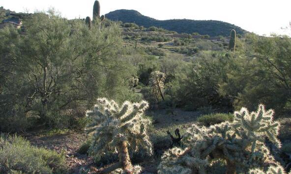 9352 S. Petroglyph Trail, Gold Canyon, AZ 85118 Photo 3