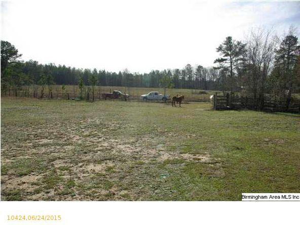 2 Horton Mill Rd., Oneonta, AL 35121 Photo 2