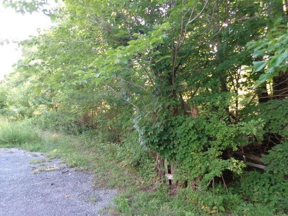 7950 Fisher Rd., Primm Springs, TN 38476 Photo 7