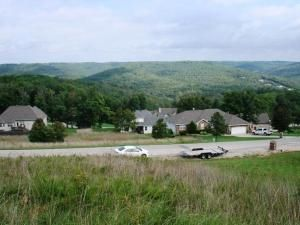 Lot 50 L 50 Whitetail Dr., Walnut Shade, MO 65771 Photo 22