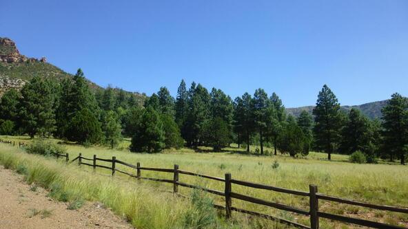220 W. Zane Grey Cir., Christopher Creek, AZ 85541 Photo 20