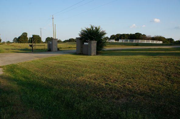 6491 County Rd. 49, Ranburne, AL 36273 Photo 4
