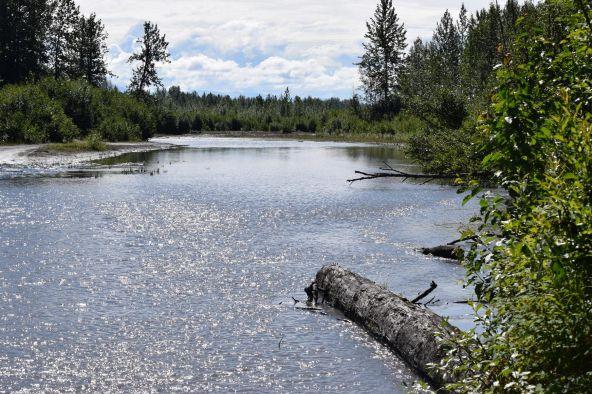 10674 E. Susitna River Rd., Trapper Creek, AK 99683 Photo 8