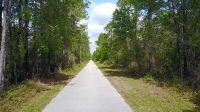 Home for sale: Van Fleet Trail, Polk City, FL 33868