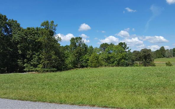 Lot27 Jewell Mason, Blairsville, GA 30512 Photo 15