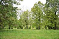 Home for sale: 4019 Savannah Dr., Harrison, AR 72601
