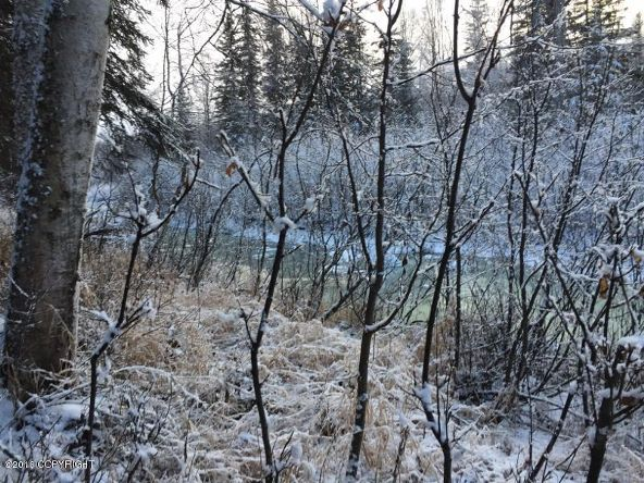 52738 S. Snowy Owl Cir., Willow, AK 99688 Photo 25