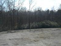 Home for sale: 85 Acres Mcleod St., Hot Springs National Park, AR 71913