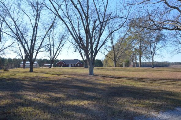 1365 County Rd. 104, Brundidge, AL 36010 Photo 26