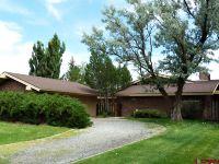 Home for sale: 64 El Rio, Alamosa, CO 81101