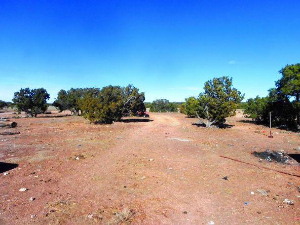9877 Bluebell Ln., White Mountain Lake, AZ 85912 Photo 20