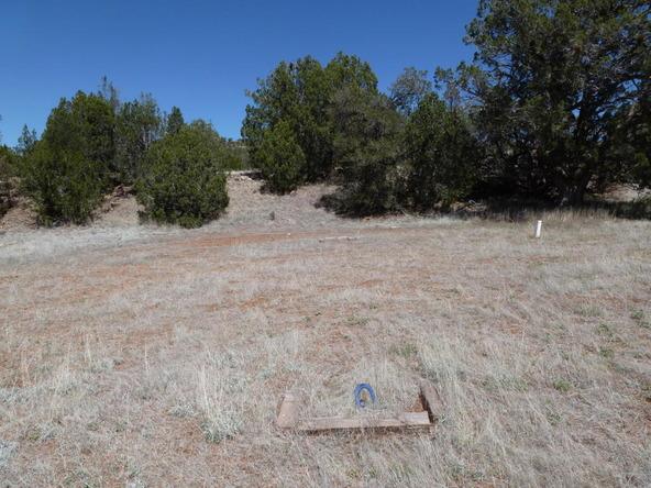 42100 N. Dead Tree Rd., Seligman, AZ 86337 Photo 19