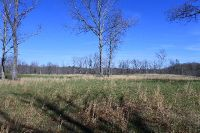 Home for sale: 16.8 Ac Wilder Rd., Wilder, TN 38589