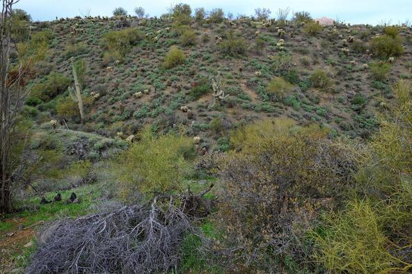 13929 E. Big Horn Parkway, Fountain Hills, AZ 85268 Photo 7
