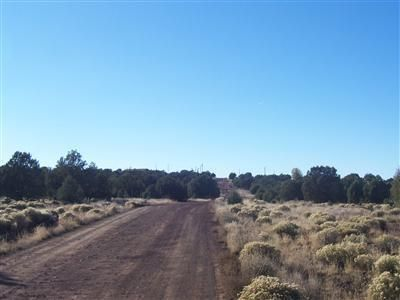 1357 W. Pinto Dr., Ash Fork, AZ 86320 Photo 7