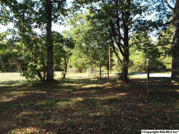 1654 County Rd. 641, Mentone, AL 35984 Photo 24