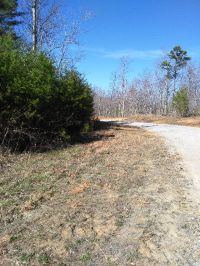 Home for sale: Lot 71 Parkstown Rd., Wilder, TN 38589