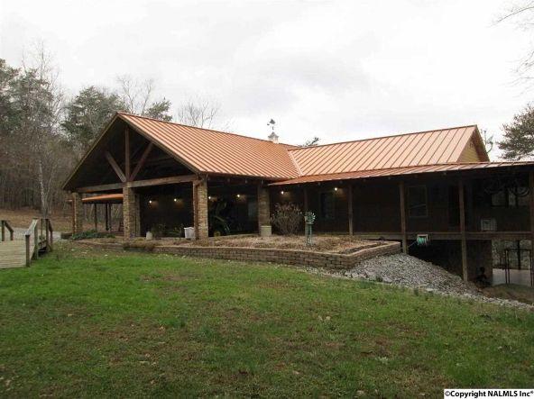 3809 County Rd. 275, Fort Payne, AL 35967 Photo 1