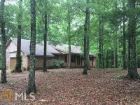 Home for sale: 3101 Trammell Mill Rd., Shiloh, GA 31826