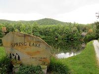 Home for sale: 17 Chestnut Ridge Ln., Dillard Ga, Atlanta, GA 30357