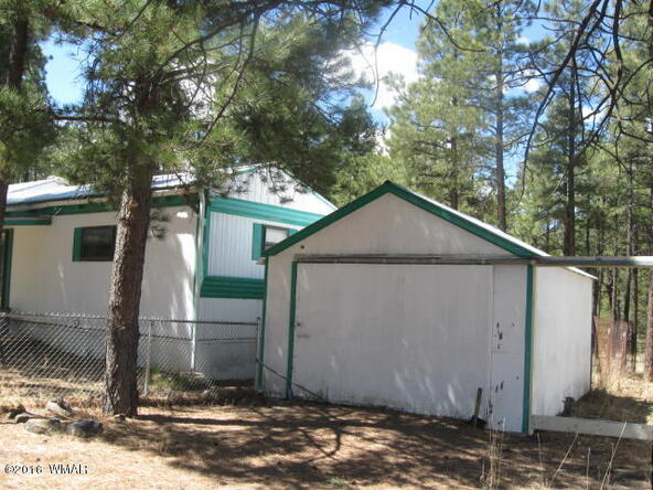 38730 Hwy. 373, Greer, AZ 85927 Photo 10